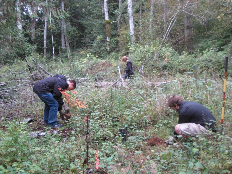 StudentReforestation